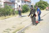 Cadde ve sokaklar temizleniyor