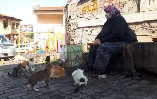 Sigaradan vaz geçti, kedilerinden vaz geçmedi